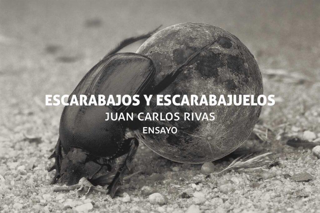 Escarabajos salvadoreños y poéticos